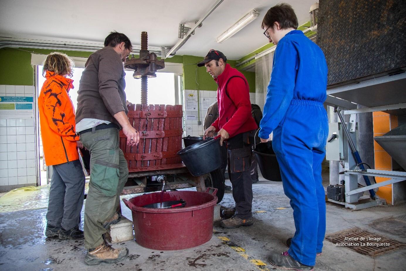 viticulture la bourguette