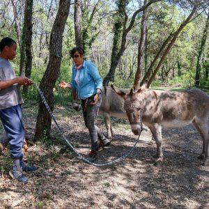 La médiation animale à l'IME La Bourguette